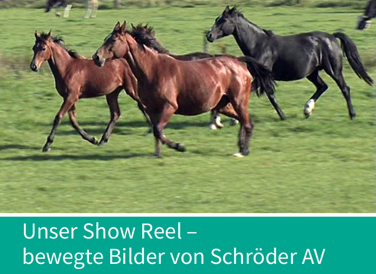 Unser Show-Reel